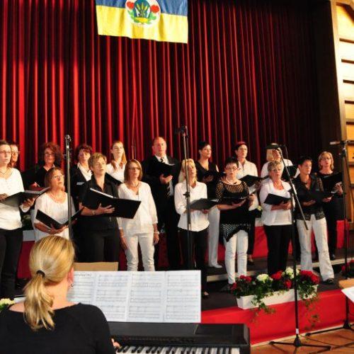 total vokal beim Konzert in der Oskar-Mozer-Halle Herbrechtingen